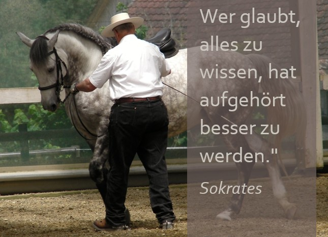 Spruch Sokrates