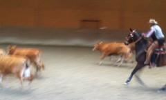 CowWorking1