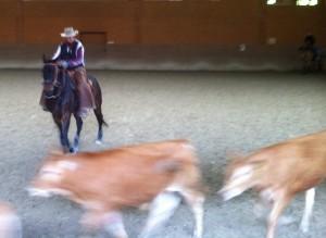 CowWorking3