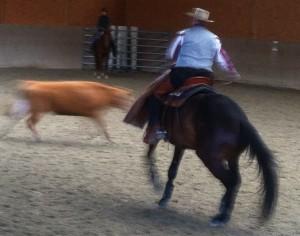 CowWorking4