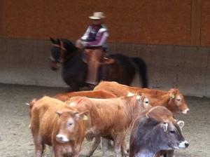 CowWorking9