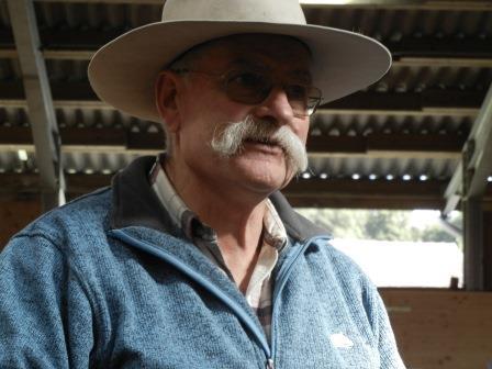 """Berni: """"Pferde sind wie Ehepartner. Sie mögen es gar nicht, wenn du ihnen dauernd sagst, was sie tun sollen, während sie es bereits tun."""""""