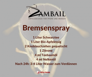 Rezept Bremsenspray