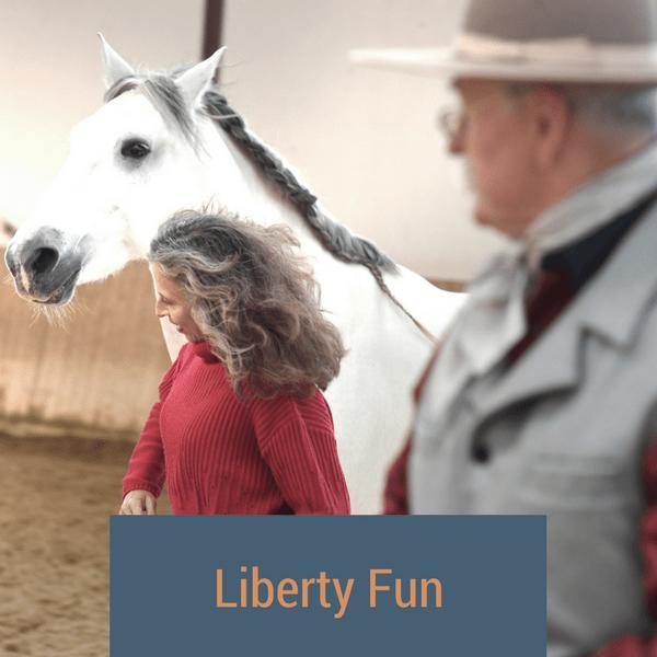 libertyfun