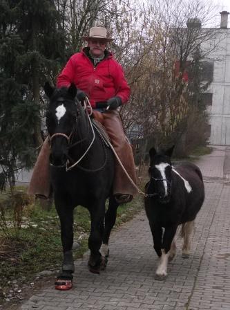 Ausbildungspferd Samun in sicherer Begleitung von Berni und Prom