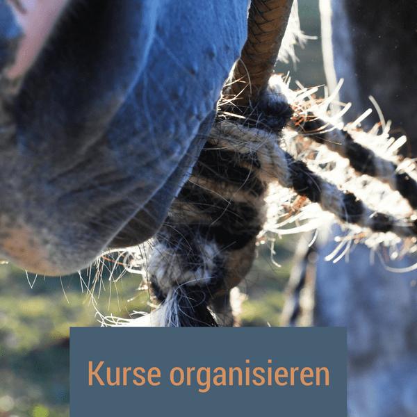 kurse_organisieren
