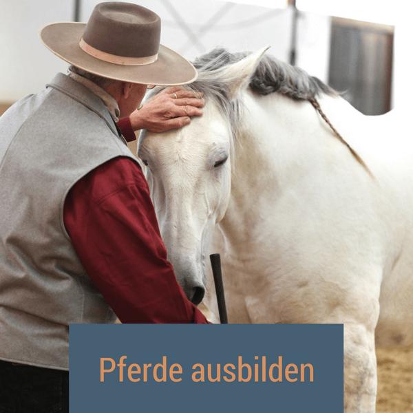 pferde_ausbilden