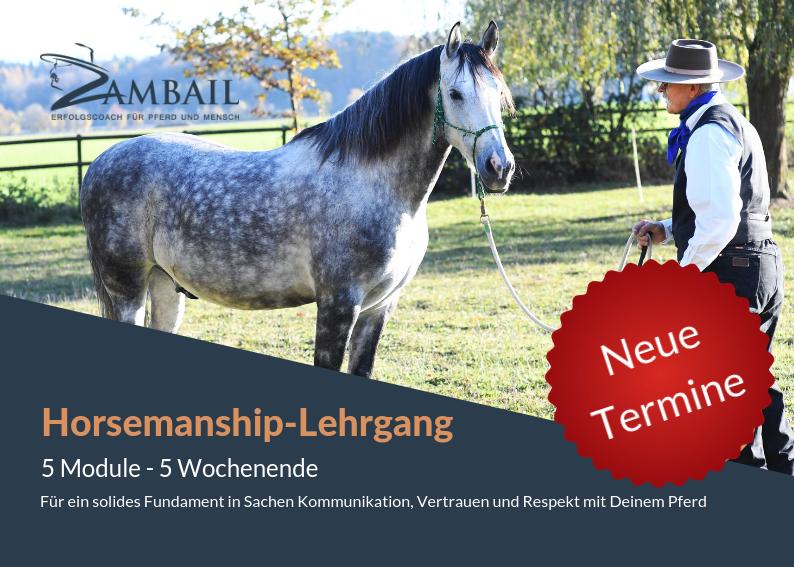 Horsemanship-Lehrgang