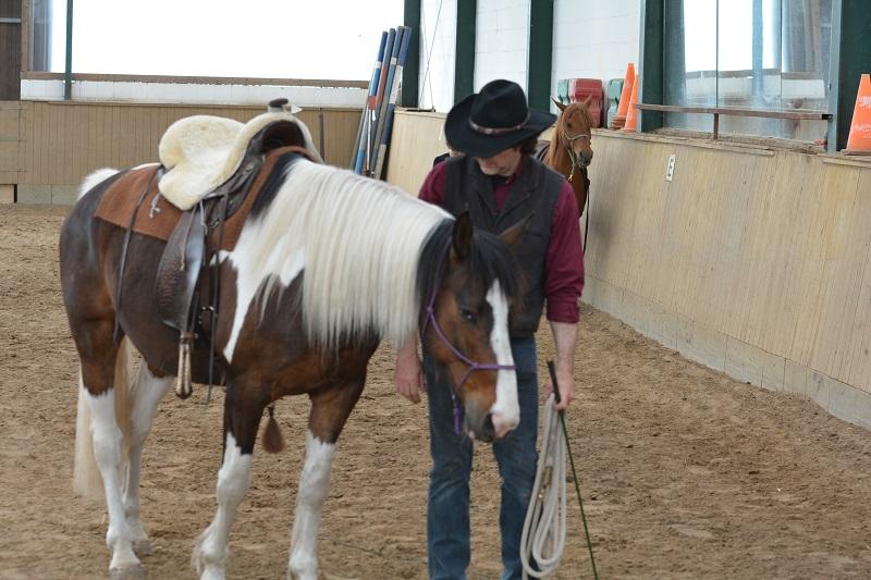 Thilo mit seinem Pferd